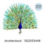 beautiful vector illustration... | Shutterstock .eps vector #502053448