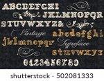 font typeface  vintage styled... | Shutterstock .eps vector #502081333