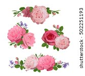 set of flowers  roses with... | Shutterstock .eps vector #502251193
