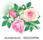 a beautiful bouquet of roses | Shutterstock . vector #502253908