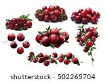 Cranberries And Lingonberry ...