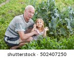 grandfather and granddaughter... | Shutterstock . vector #502407250