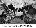 flowers roses black and white | Shutterstock . vector #502559764