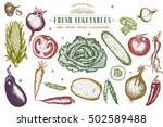 hand drawn vegetables set ... | Shutterstock .eps vector #502589488