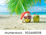 two coconut on the sand. winter ... | Shutterstock . vector #502668058