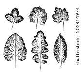 set of vector leaf imprints.... | Shutterstock .eps vector #502814974