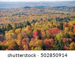 red maples and birch trees... | Shutterstock . vector #502850914