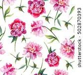 pink peony flower hand drawn... | Shutterstock . vector #502870393