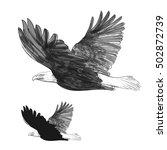 eagle | Shutterstock .eps vector #502872739