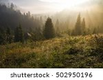 Stock photo at morning dawn mist over the forest in the carpathian mountains 502950196