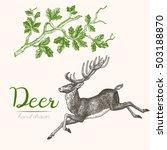 deer engraving style  vintage... | Shutterstock .eps vector #503188870