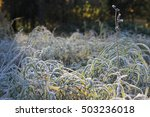 first frosty autumn morning in ... | Shutterstock . vector #503236018