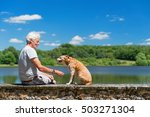senior man with old brown dog... | Shutterstock . vector #503271304