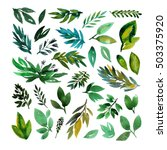 collection of hand drawn leaves....   Shutterstock . vector #503375920