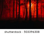 scary foggy forest. silhouettes ... | Shutterstock . vector #503396308