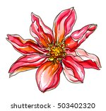 red passion tropical flower in... | Shutterstock . vector #503402320