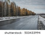 wet road in the forest | Shutterstock . vector #503433994