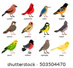 Stock vector  wonderful set consisting of nice colored birds 503504470