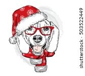 Funny Dog In Christmas Hat....