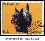 Paraguay   Circa 1986  A Stamp...
