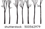 birch tree silhouette background | Shutterstock . vector #503562979