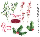 christmas set of plants with... | Shutterstock . vector #503614810