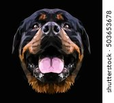 rottweiler dog animal low poly... | Shutterstock .eps vector #503653678
