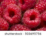 raspberry with drops of water ... | Shutterstock . vector #503695756