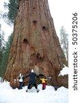 Family hugging sequoia tree - stock photo