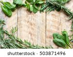 mint  rosemary  thyme   fresh... | Shutterstock . vector #503871496