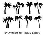 palm tree black set. vector...   Shutterstock .eps vector #503912893