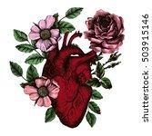 blooming anatomical human heart.... | Shutterstock .eps vector #503915146