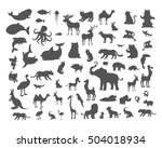 set of animals silhouettes.... | Shutterstock .eps vector #504018934