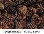 pine cones | Shutterstock . vector #504125590