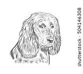 dog hand draw spaniel | Shutterstock .eps vector #504146308