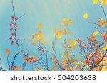 Fall Tree Leafs Over Sky