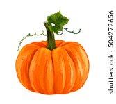 ripe pumpkin. autumn pumpkin... | Shutterstock .eps vector #504272656