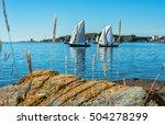 Swedish Sea Coast Scenery With...