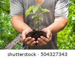 man hand holding young plant... | Shutterstock . vector #504327343