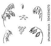 hand drawn set of oats  oatmeal ... | Shutterstock .eps vector #504354070