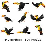 illustration of set of toucans... | Shutterstock . vector #504400123
