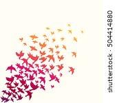 birds silhouette vector... | Shutterstock .eps vector #504414880