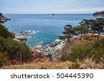 autumn scene from japan sea... | Shutterstock . vector #504445390
