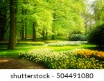 Green Grass Lawn With Trees An...