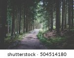 Hiking Trail In The Forest...