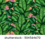 hand painted watercolor... | Shutterstock . vector #504564670