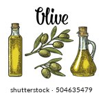 bottle glass of olive oil with... | Shutterstock .eps vector #504635479