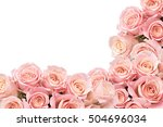 Border of soft roses with space ...