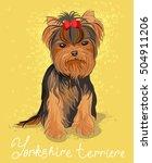 illustration of yorkshire... | Shutterstock .eps vector #504911206