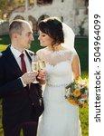 happy newlyweds drinking...   Shutterstock . vector #504964099